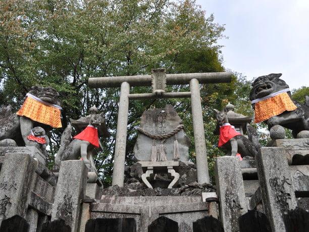 aokiookami