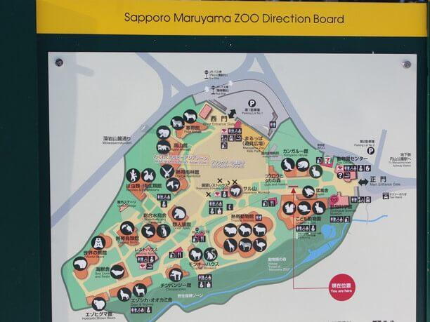 ennnai map