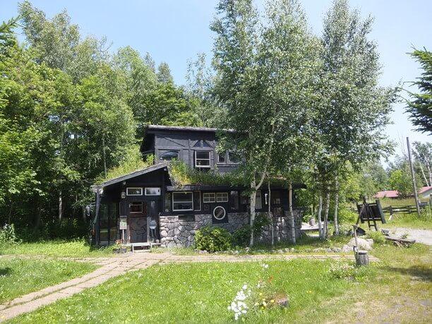midori and house